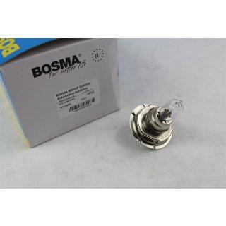 BOSMA 12V 15W P26s Sockel Halogen